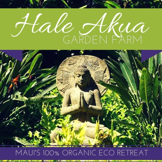 Copy of Hale Akua